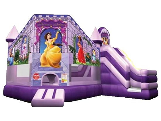 Large Princess with slide